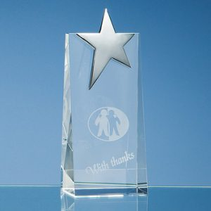 Silver Star Wedge Trophy